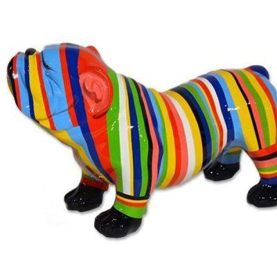 Bulldog anglais multicolore